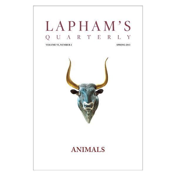 Animals - Poster